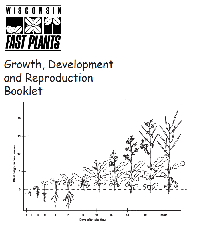 growth and development of brassica rapa plants essay The effect on growth of the different levels of ph on brassica rapa 1 the effect on length and weight of a brassica rapa plant that different levels of.