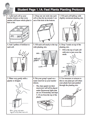an introduction to growing wisconsin fast plants Carbon dioxide levels as a variable is an interesting option, david in 1993, one of the wisconsin fast plants program newsletters featured an activity that is very similar towhat you describe here, using a chamber for growing the plants (and regulating the co2 levels) made from a recycled 2.