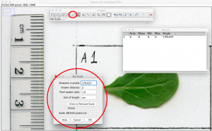 Using ImageJ tool for counting leaf hairs on Fast Plants