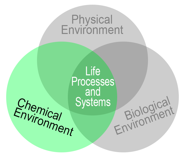 chemical environment factors