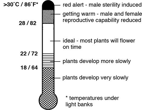 Fast Plants Temperature Range