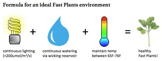 fast-plants-ideal-environment-formula