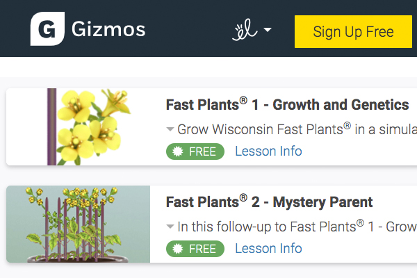 Gizmo-Fast-Plants-simulations