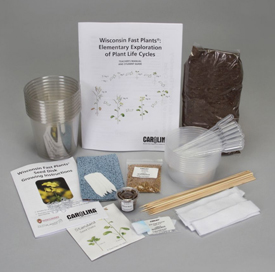 Carolina Biological Fast Plants kit