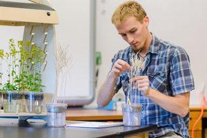 Preservice-teacher-Fast-Plants-experiences